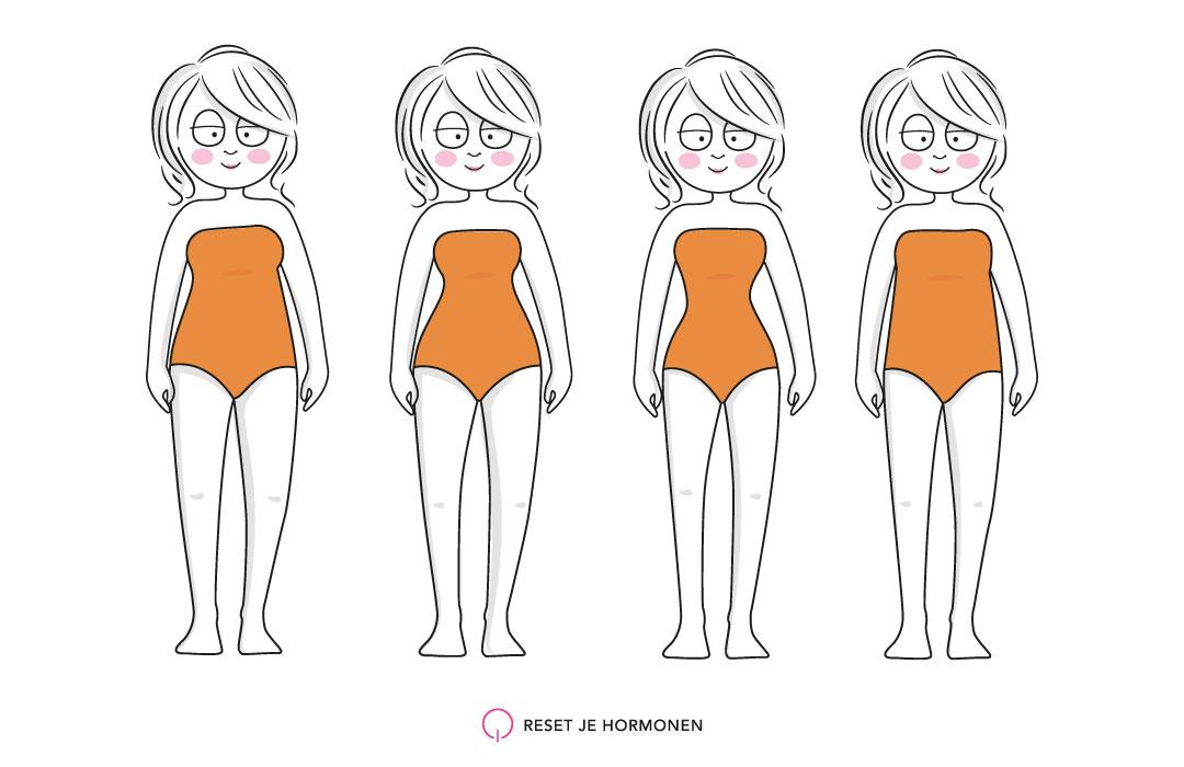Je bekijkt nu Lichaamsvormen